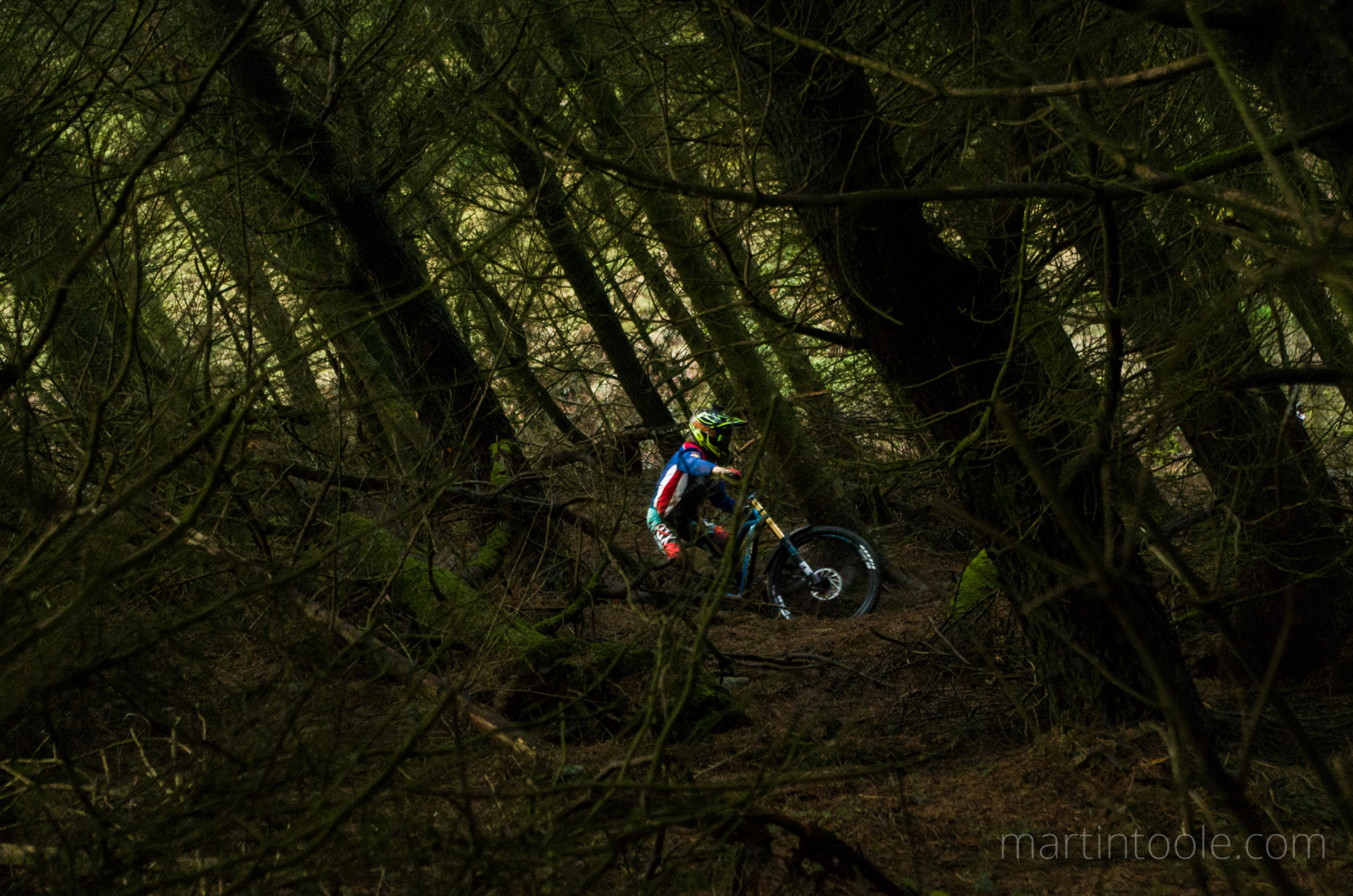 mountain biker on the nant gwrtheyn downhill mountain bike track in the trees