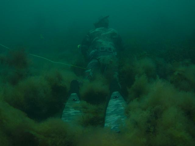 spearfishing criccieth in north wales underwater
